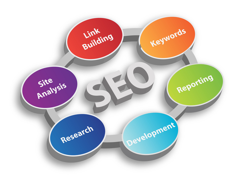 Professional SEO Services Professional HCM