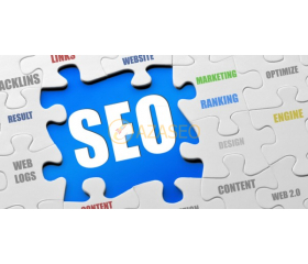 What is the standard SEO website?